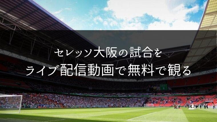 セレッソ大阪の試合をライブ配信動画で無料で観れるサイト紹介